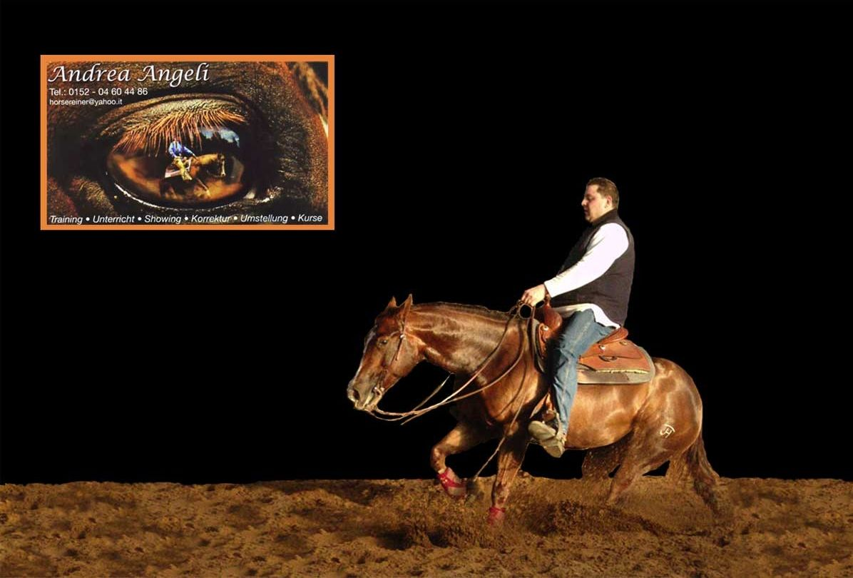 ANDREA ANGELI-Reining Horses Training, Showing & Sales